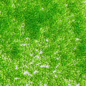 PRECIOSA rokajl 10/0 jasně zelený transparentní - 50 g